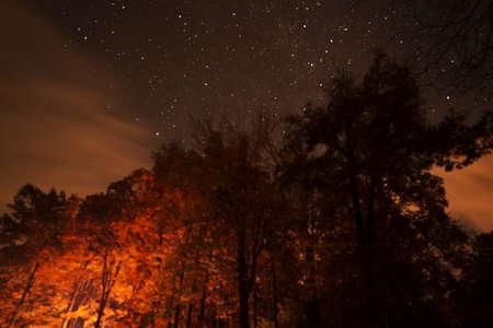 Night Sky in North Carolina Stock Photo - 16693926