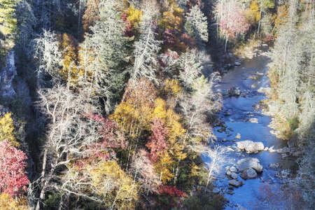 Fall in North Carolina Stock Photo - 16693940