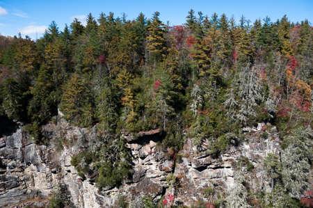 Fall in North Carolina Stock Photo - 16693918