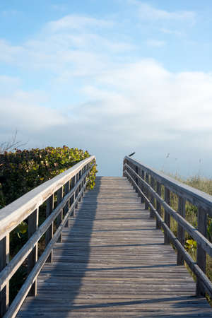 Canaveral National Seashore Stock Photo - 17183390