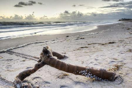 cloud drift: Beach in Sebastian, Florida Stock Photo