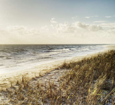 Beach in Sebastian, Florida Stock Photo - 17299926