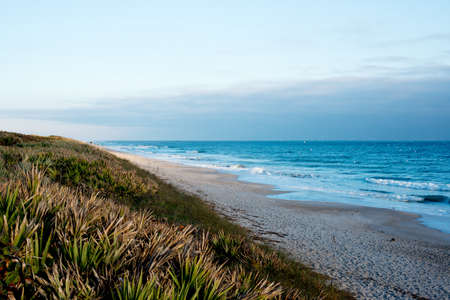 Canaveral National Seashore photo