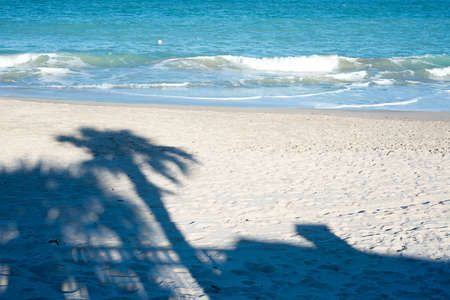 Beach with Shadow of Palm Tree Stock Photo - 17677987