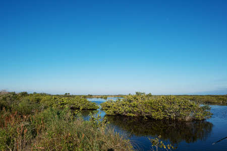 Merritt Island Wildlife Refuge photo