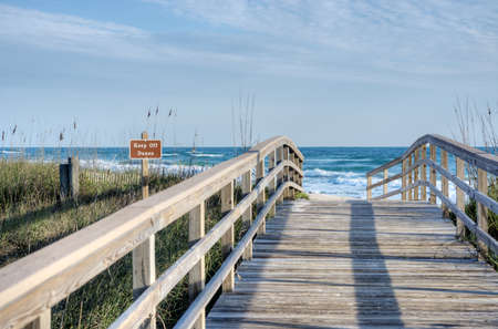 Canaveral National Seashore in Florida Stock Photo - 18445445