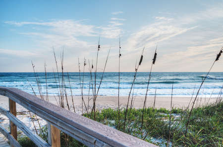 Canaveral National Seashore in Florida Stock Photo - 18445467