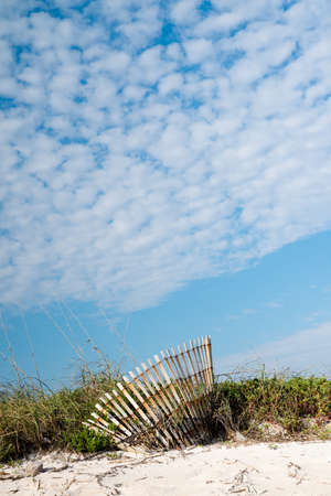 Canaveral National Seashore in Florida Stock Photo - 18445441