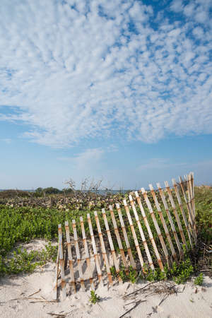 Canaveral National Seashore in Florida Stock Photo - 18445446