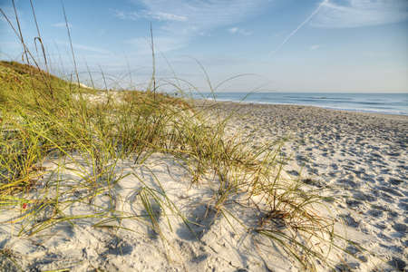 Dunes in Melbourne Beach Stock Photo - 18656246