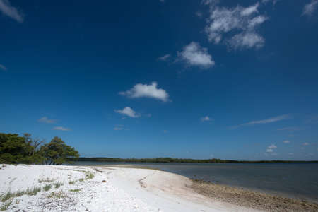 Tiger Key in Ten Thousand Islands Stock Photo - 19502521