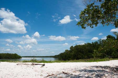 Beach in the Ten Thousand Islands Stock Photo - 19502518
