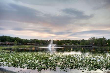 Lake Lily in Maitland, Florida Stock Photo - 19502797