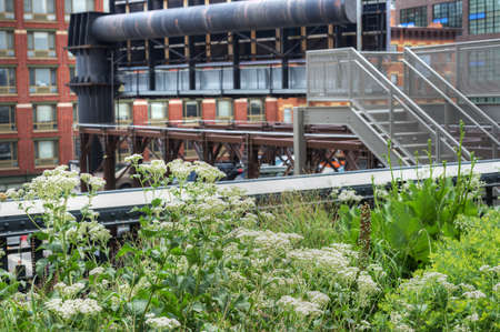 Highline in NYC Stock Photo - 20862593