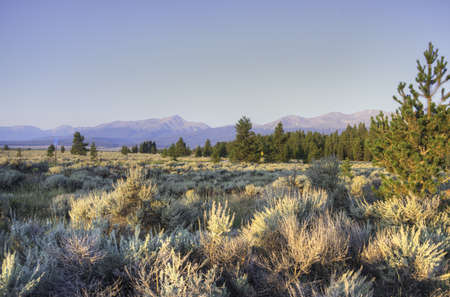 Colorado Rockies in the Morning Stock Photo - 22083568