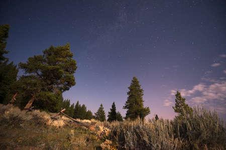 Night Sky with Stars Stock Photo - 21889470