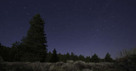 Night Sky in Colorado Stock Photo - 21889518