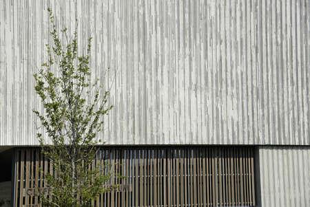 Detail of Building in Denver Stock Photo - 21889522
