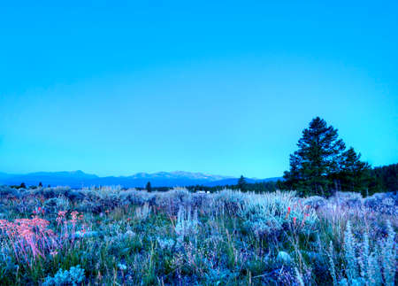 Morning in the Rocky Mountains Stock Photo - 23308511