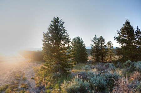 Sunrise in the Rockies Stock Photo - 23308515