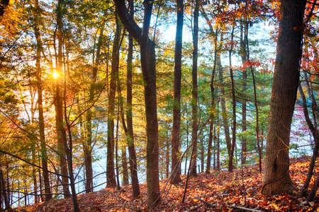 north carolina: Fall in North Carolina
