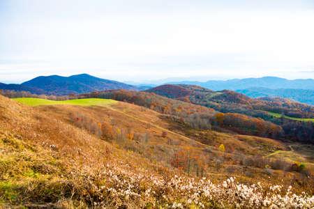 Fall in the Blue Ridge Mountains of North Carolina