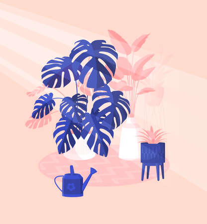 Scandinavian style interior vector fragment. The green corner of the room is lined with domestic plants in rays of the sun, creating coziness and decorating the apartment. Colorful flat illustration