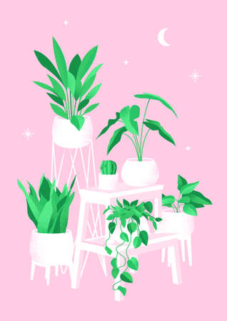 Retro poster with home plants. Creates comfort and decorates the interior. Vector illustration with the addition of noise in vintage style. Illustration