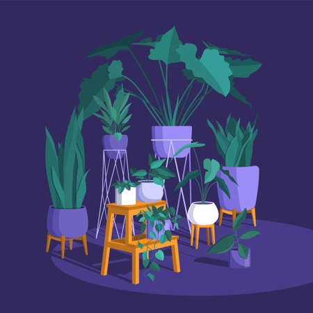 Scandinavian style interior vector fragment. The green corner of the room is lined with domestic plants, creating coziness and decorating the apartment. Colorful flat illustration