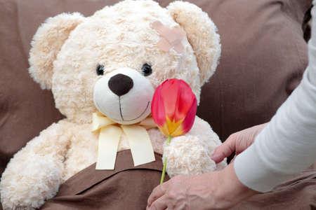 plush: Giving sick patient (plush bear) flower. Stock Photo