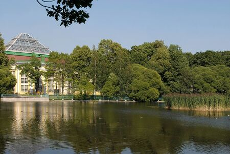 The pond and the greens in the Tavricheskiy garden of Saint-Petersburg