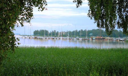 Lake with reeds in Loviisa in Finland  A view of the pier