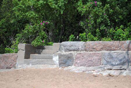 Stone steps against the green vegetation