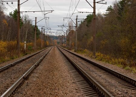 Rails of the railroad in the autumn forest