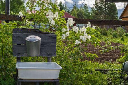 lilacs: Old aluminum washbasin at their summer cottage against the backdrop of blooming lilacs. Stock Photo