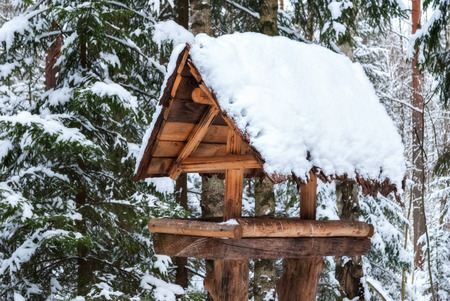 The image of the feeders for the birds in a wooden house with a roof covered with snow, in a pine forest. Stock Photo