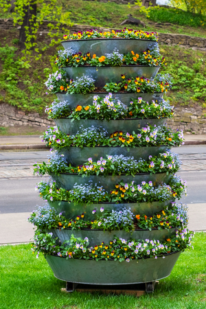 Flowerbed consisting of several tiers with decorative fresh flowers standing along the road on the lawn with green grass in old Riga.