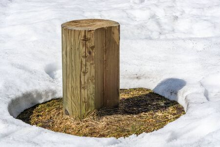 Spring thaw in the snow with a wooden stump in the middle.