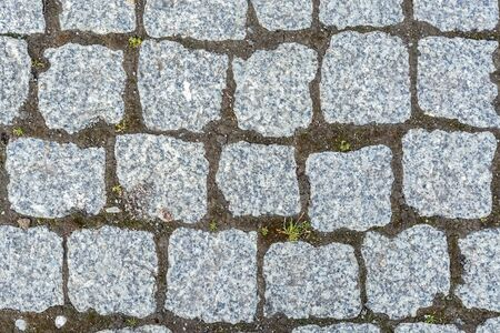 Fragment of a cobbled gray cobblestone pavement for use as an abstract background and texture.