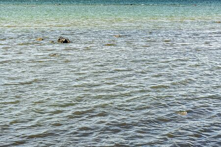 Water surface of the sea bay with different shades of blue, covered with small ripples.