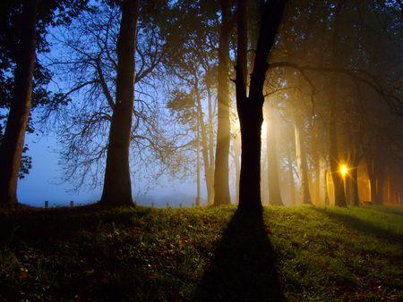madre tierra: amanecer en el callej�n de beautyful Foto de archivo