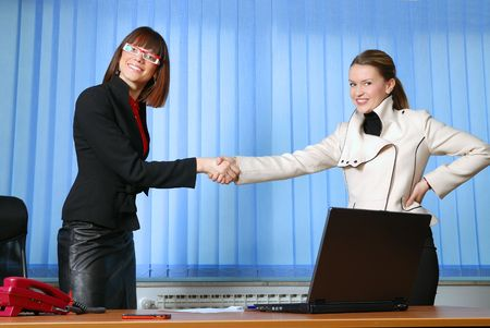 business woman handshake and success deal concept Stock Photo - 5403823