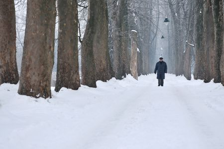 one senior man wak outdoor in nature at winter early morning forward photo