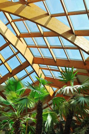 modern home roof wood roof construction with many windows blue sky and green palm leafs Stock Photo - 5446980