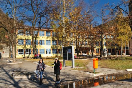 school campus: elementray schoold building at sunny autumn day
