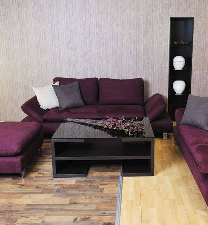 modern living room interior atstylish furniture and sofa Stock Photo - 16412982