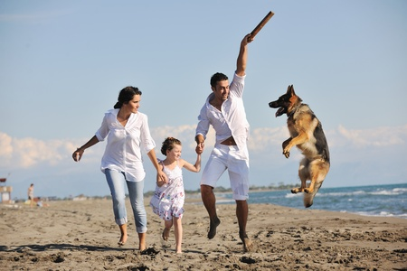 animal family: happy young family in white clothing have fun and play with beautiful dog at vacations on beautiful beach  Stock Photo