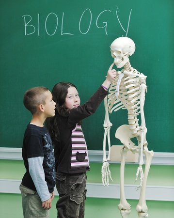 happy children group  in school classrom taking notes and learning biology and anatomy lessons with teacher photo