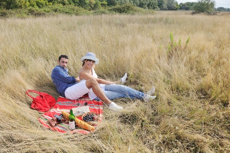 happy young couple enjoying  picnic on the countryside in the field  and have good time Stock Photo - 8327926