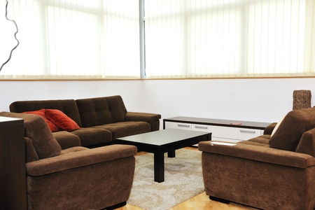 modern livingroom indoor with new furniture and home decorations photo